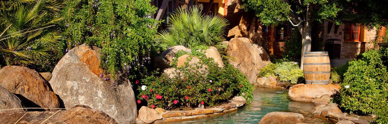 Landscape Design Palm Springs Palm Desert Sohnco Landscape